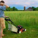 Какой газонокосилкой косить высокую траву
